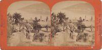 Vista Da Stresa Ile Belle Lac Maggiore Italia Stereo Vintage Albumina Ca 1870