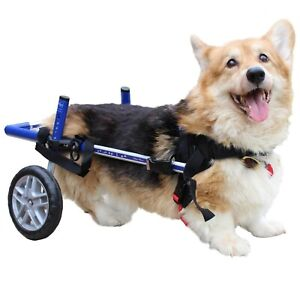 Corgi Dog Wheelchair - for Small Dogs 18-40+ Pounds - Veterinarian Approved