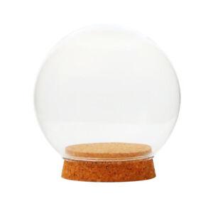 Glass Globe Cover Decorative Plant Flower Container DIY Microlandscape Decor