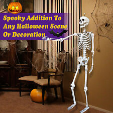 Poseable 5.6' Crazy Skeleton Skull Pose-N-Stay Life Size Halloween Party Decor