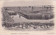 ARCACHON 24 un parc aux huîtres timbrée 1905