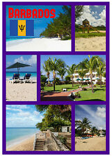 BARBADOS - SOUVENIR NOVELTY FRIDGE MAGNET - SIGHTS / FLAGS - GIFTS - BRAND NEW