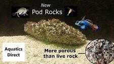 Pod Rock marine reef live rock amphipods copepods mandarin mandarinfish dragonet