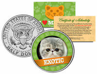 EXOTIC  Cat JFK Kennedy Half Dollar US Colorized Coin