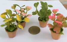 1:12 Scale Pink /& Green Plant in Pot tumdee Dolls House Garden Accessory P17