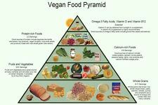 Vegan Food Pyramid Healthy Eating Meal and Diet Plan 13 x 19 Poster