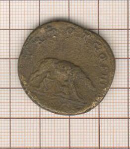 Sesterce d ' Antonin le Pieux à la louve allaitant Romulus et Remus