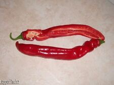 25 Chinese Hj-1 Corona Space Chili Mild Pepper Seeds- D 66