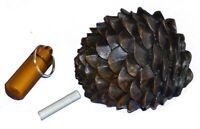 Geocaching Versteck Tannenzapfen Logstreifen Micno cache container pine cone