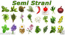 AROMATIC HERBS 480 Seeds in 24 Variety Complete Coll.: CHILI, BASIL, SAGE etc