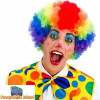 Rainbow Colours Clown Afro Curly Big Hair Wig Adults Mens Fancy Dress Costume