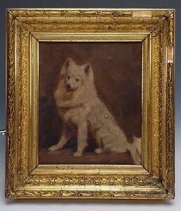 ANTIQUE 19th C. FOLK-ART DOG PORTRAIT OIL PAINTING IN GILDED WOOD FRAME