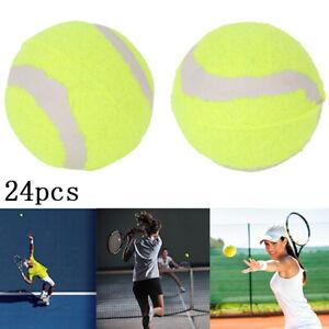 24Pcs Tennis Balls Sports Outdoor Fun Cricket Beach Dog pet play low bonce