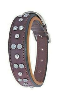 Shwaan Studded with Metal rivets and crystals, Rhinestones Premium Leather Dog