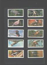 cigarette cards british birds full set