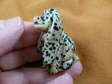 (Y-Dog-Cs-565) spotted Jasper Cocker Spaniel dog gemstone gem carving show dogs