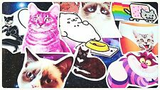 Kawaii Cat stickers,Cat Person,Diary Planner Journal Kawaii Funny Cute Stickers