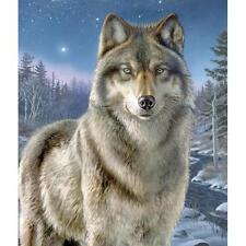 "Artist's Collection  NIGHT WATCH Wolf Paint by Number Kit  9"" X 12"""