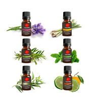 100% Pure Essential Oil Aromatherapy Gift Set for Diffuser Humidifier-6x10ml Lot