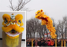 Chinese Folk art Lion Dance mascot Costume wool Southern Lion For two adults new