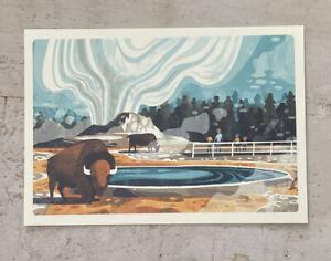 Postcard ~16x11.5cm USA National Parks Yellowstone Bison Buffalo