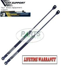 2 REAR TRUNK LID LIFT SUPPORTS SHOCKS STRUTS ARMS PROPS RODS FITS LANCIA BETA