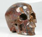 Huge+4.1%22+Pietersite+Carved+Crystal+Skull%2C+Realistic%2C+Crystal+Healing