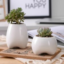 Tooth Shape Flower Pots Ceramic Planter Teeth Mini Desktop Succulent Planter Pot