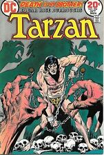 Tarzan Comic Book #224, DC Comics 1973 VERY FINE+