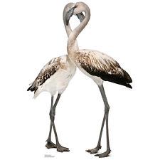 FLAMINGOS CARDBOARD CUTOUT Standee Standup Poster Prop Birds FREE SHIPPING