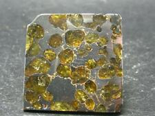 LARGE BRAHIN METEORITE PALLASITE PIECE RUSSIA - 17.7 GRAMS - 1.4""
