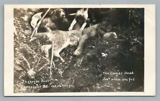 Cougar Hunt RARE Vancouver BC British Columbia Hunting Photo—Dog—Bullen Lamb '11