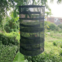 Hanging Dry Rack 4/8 Tier Hydroponic Grow Tent Herb Bud Plant Drying Net