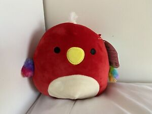"""Squishmallows Paco Parrot 7"""" BNWT"""