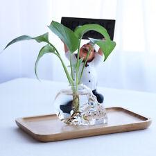 Glass Flower Vase Skull Shaped Flower Plants Pot Terrarium Container Decor