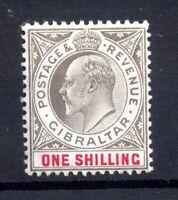 Gibraltar KEVII 1903 1/- black & carmine SG51 mint MH WS20934