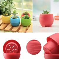 Nursery Pot Garden Supplies Home Office Decoration Succulent Plant Flowerpot