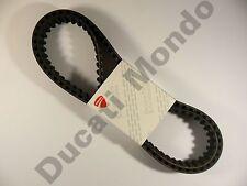 Ducati OEM pair cam timing belts ST3 Multistrada 1000 1100 Monster S2R SC GT HYM