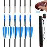 "31"" Archery Hunting Fiberglass Arrows for Compound Recurve Bow & Arrow Quiver"