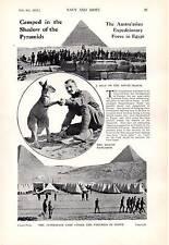 1915 WWI ~ Australische Armee IN Ägypten Camp Unter Pyramiden Känguru