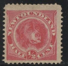 MOTON114     #56 Newfoundland Canada mint