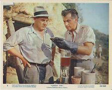 """Stewart Granger / Paul Douglas (US-Foto '54) - in """"Grünes Feuer"""""""