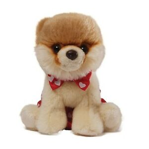 """ITTY BITTY BOO"" The Worlds Cutest Dog .. Internet Sensation! - Box Tie"