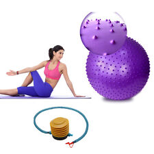 Yoga Fitness Ball 85cm Massage Ball Purple w/Air Pump Aerobic Abdominal Exercise