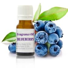 10 ml Blueberry Premium Fragrance Oil for Soap/Candle/Cosmetics