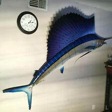 Sailfish Beautiful Full Mount 9 foot 2 inches 110 inches caught Mexico