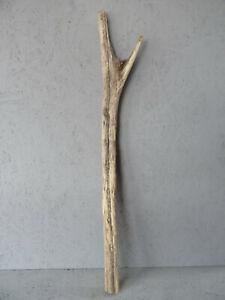 Treibholz Driftwood Schwemmholz garten skulptur dekoration stamm DIY xxl 97cm