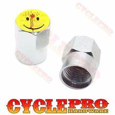 2 Silver Hex - Billet Aluminum Custom Valve Caps for Motorcycle - Shot Smile(Fits: Mastiff)