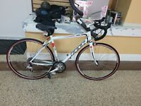 felt Z100 Road Bike 54 cm Carbon Fork