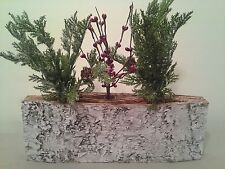 Birch Decor ~ Plant Rooter